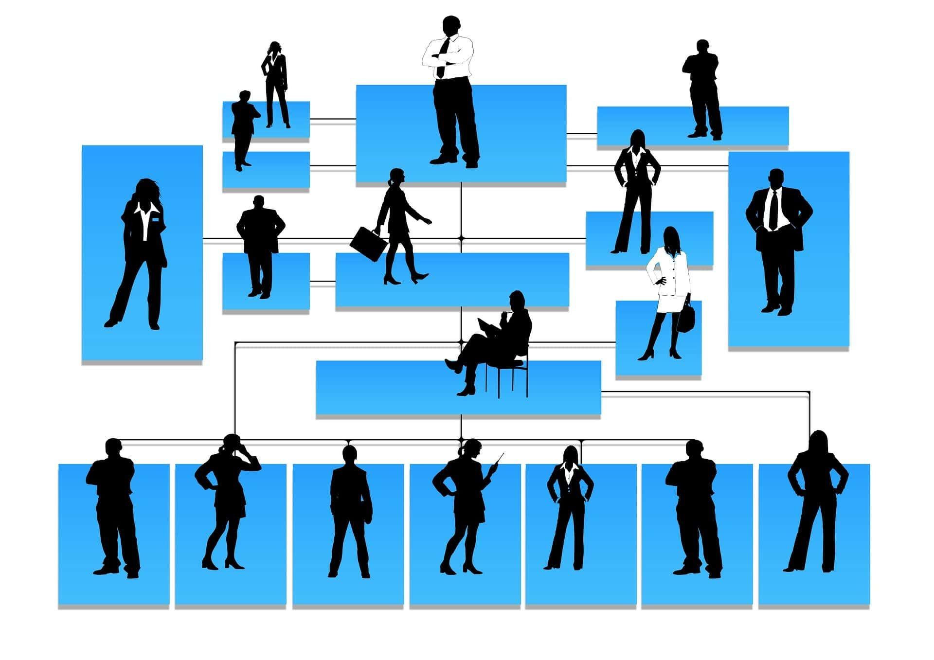 Hiérarchie au travail